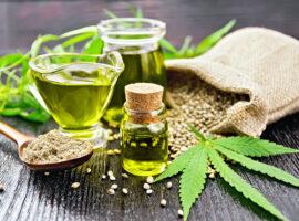 Le cannabidiol – du cannabis sans effet psychoactif