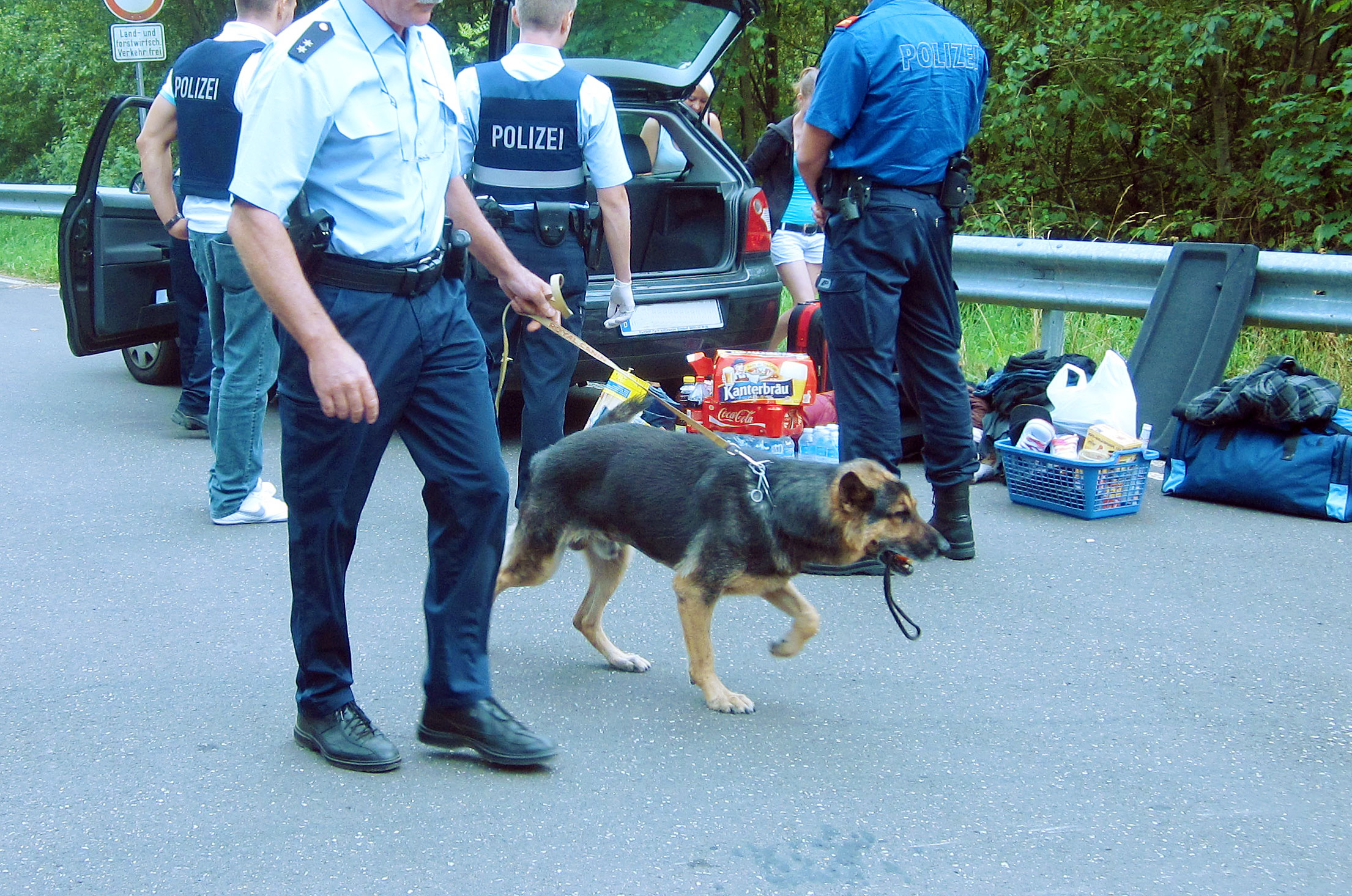 Polizeihund_Drogensuche_Nature_One_IMG_2091_Retusche_Ausschnitt