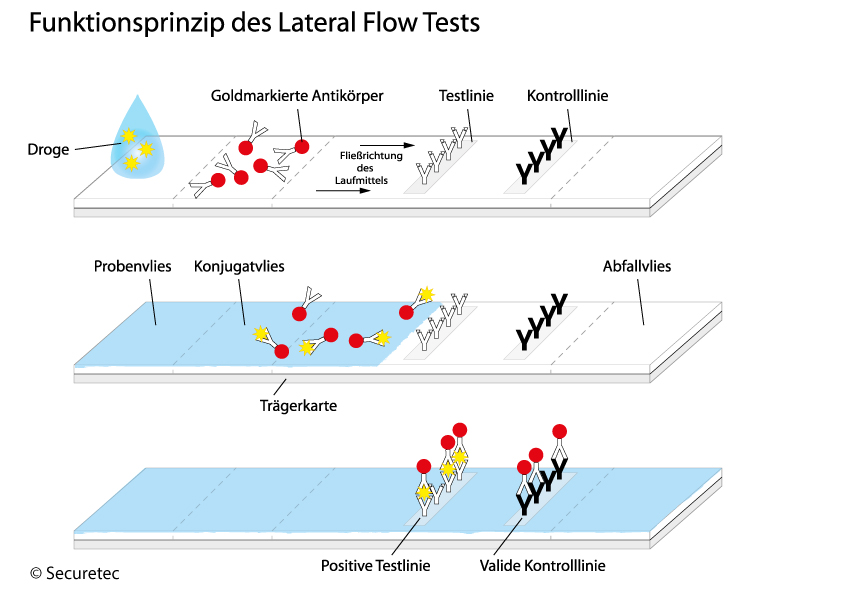 Funktionsprinzip-Lateral-Flow-Tests Drogentest